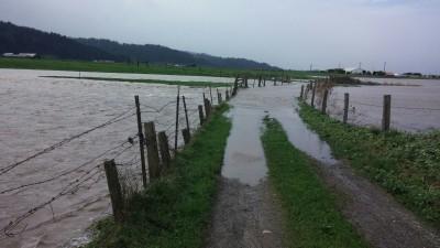 ferndalflodded